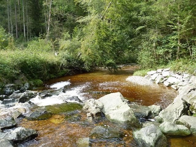 Durach-Moorwasser