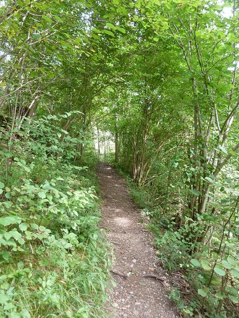 Durachtobel-Weg zur Burgruine