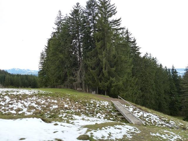 Auerberg-Nördlicher-Römerrungweg-2