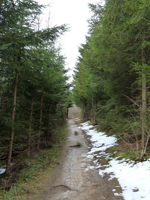 Auerberg-Weg-3