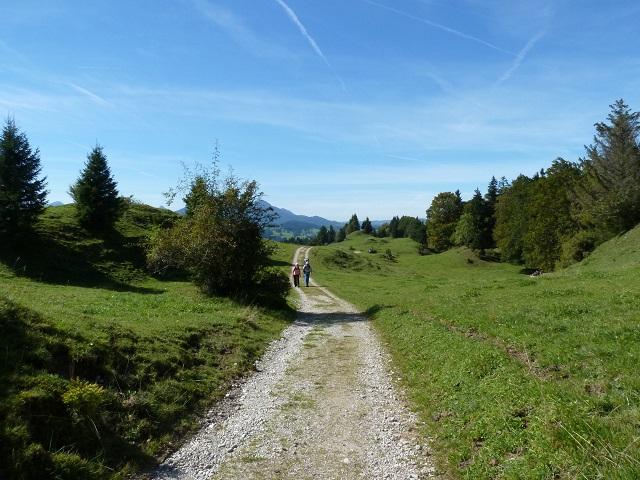 Weg zur Alpe Beichelstein