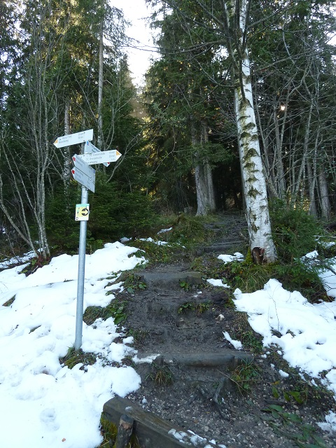Wanderweg zum Sportheim Böck auf der Alpspitz
