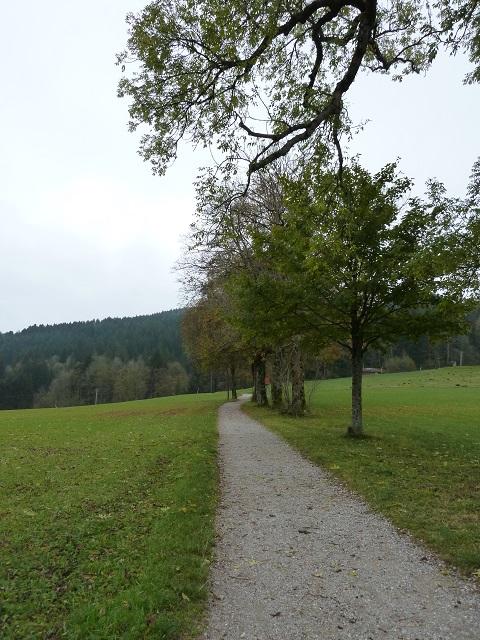Alpspitz-Wasserfallweg-1