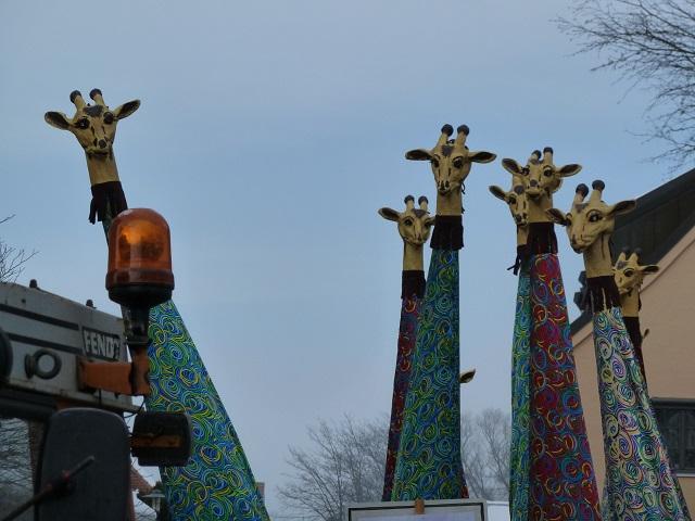 20-Giraffen