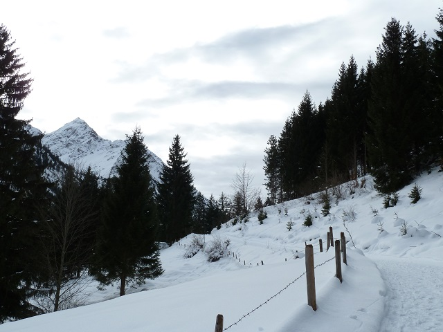Bad Hindelang - Winter-Wanderweg aufs Imberger Horn