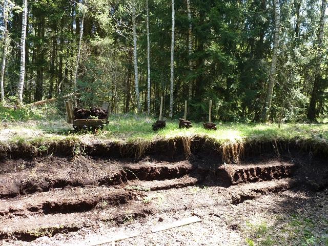 Spuren des Torfabbaus im Wurzacher Ried