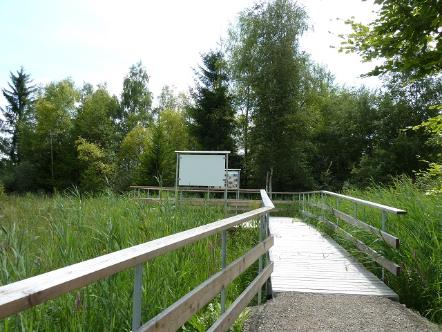 Beobachtungsplattform im Benninger Ried