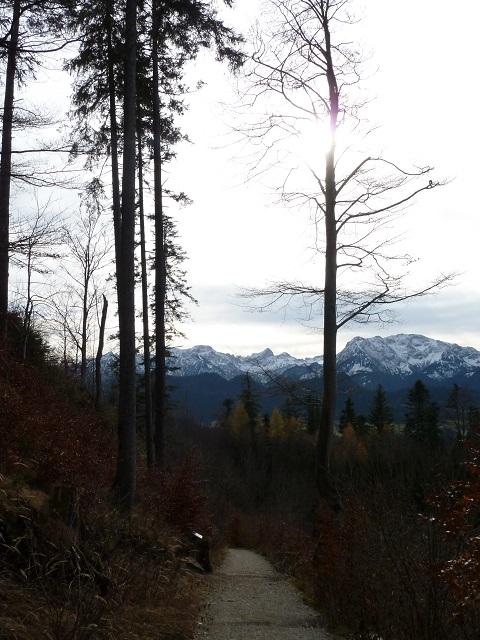 Bergblick bei Zell im Allgäu