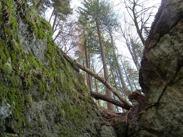 Felsen in der Teufelsküche bei Obergünzburg
