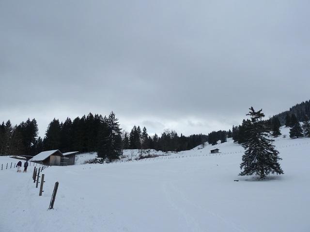 Aufstieg zur Buchenberg-Alm im Winter