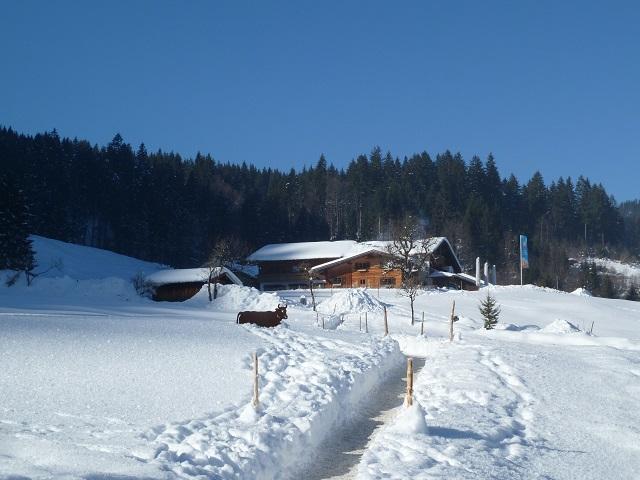 Die Alpe Dornach bei Tiefenbach im Winter