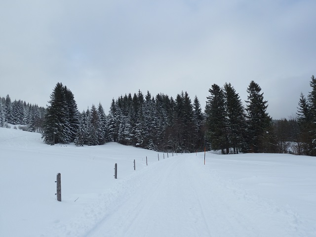 Winterwanderweg in Jungholz
