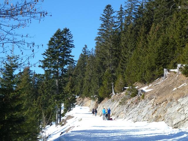 Aufstieg zum Breitenberg über den Ostlerforstweg im Winter