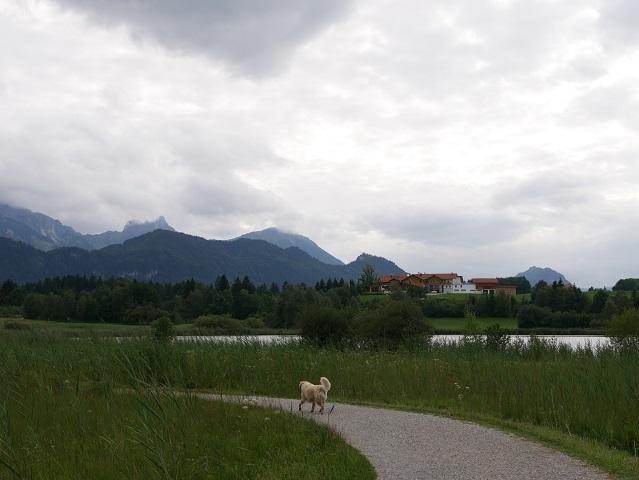 Rundwanderweg Hopfensee - Blick auf Ausflugslokal Wiesbauer