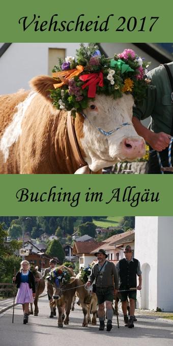 Pin zum Viehscheid Buching 2017