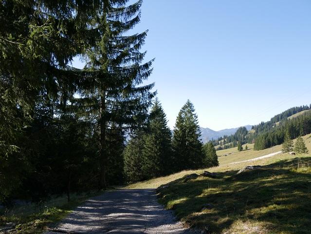 Rundwanderweg Seealpe - von der Hinteren Seealpe in den Talgrund