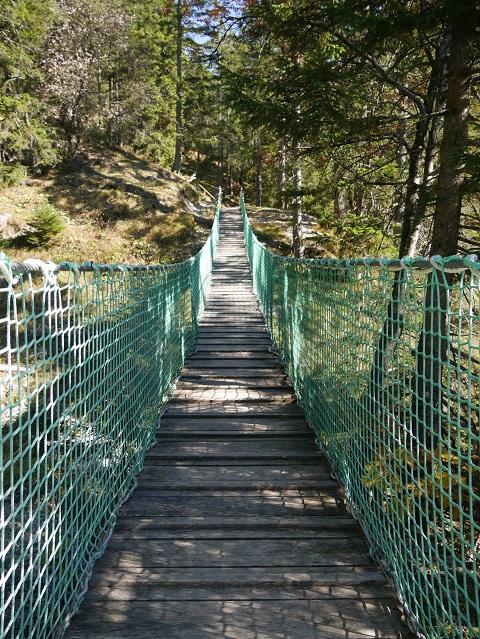 Hängebrücke am Rundwanderweg Seealpe