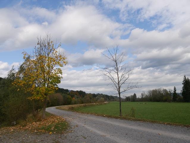 Iller-Radweg Etappe 1 zwischen Fischen und Sonthofen