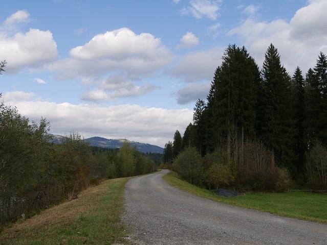 Der Iller-Radweg nach der Brücke bei Fischen