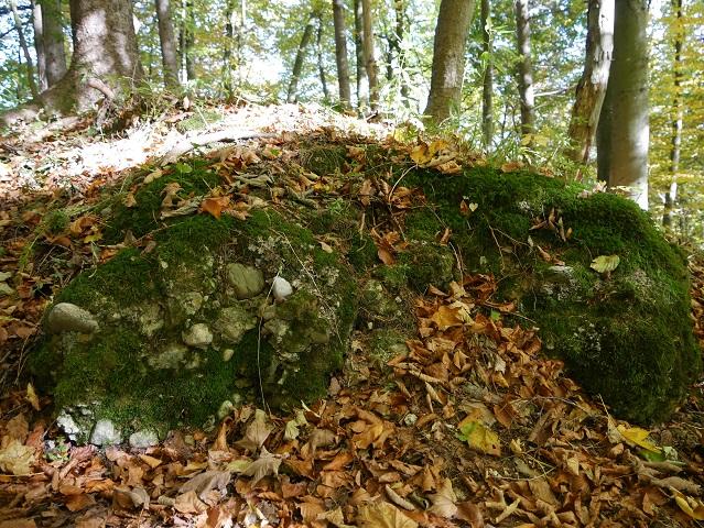 Rest der Schlossmauer von Liebenthann