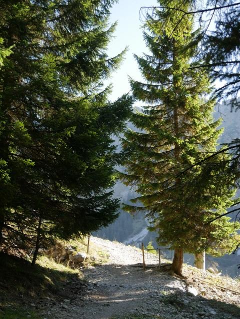 Rundwanderweg Seealpe am Nebelhorn - kleiner Anstieg