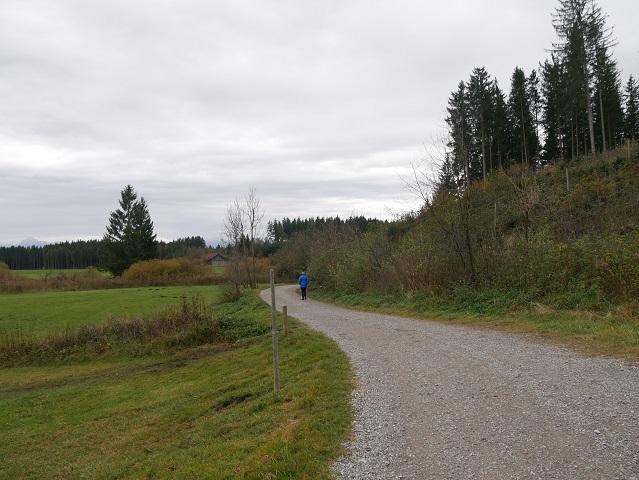 Elbsee-Rundweg - Start vom Wanderer-Parkplatz