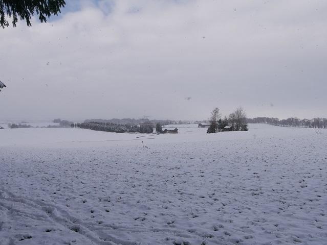 Blick über verschneite Wiesen zur Kurfürstenallee Marktoberdorf