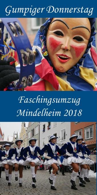 Faschingsumzug Mindelheim 2018 - Pin