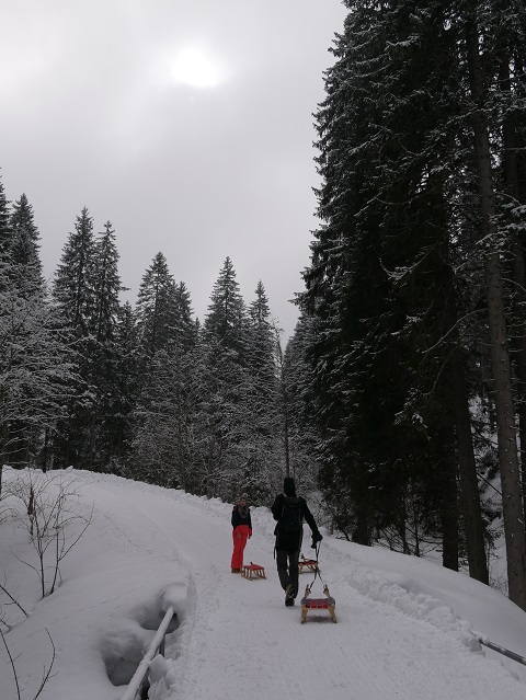 Rodeln im Gunzesrieder Tal - Aufstieg zur Alpe Mittelberg