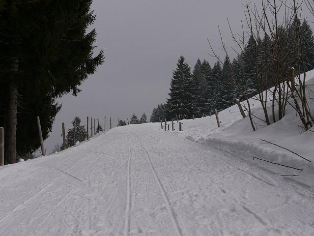 Aufstieg zum Rodeln im Gunzesrieder Tal
