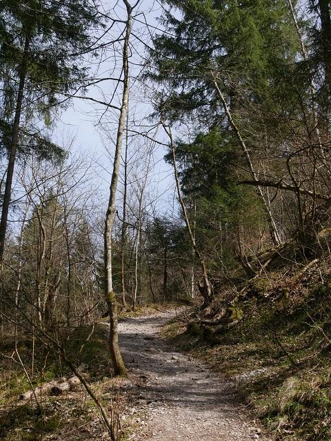 Wanderweg zu Maria Trost an der Alpspitz bei Nesselwang