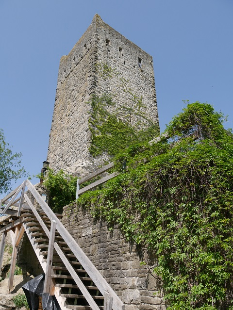 Holztreppe zur Burgruine Sulzberg