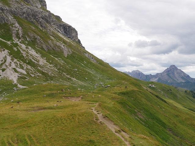 Bergweide am Großen Widderstein mit Blick auf die Widdersteinhütte