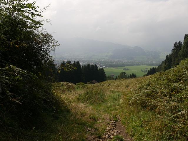 Abstieg vom Grünten zum Wanderparklpatz Winkel