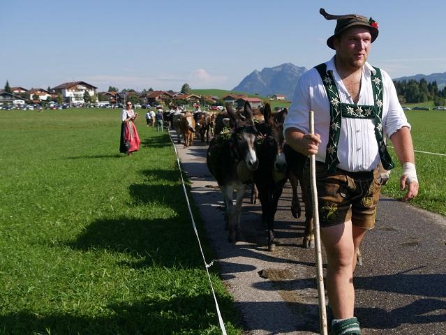 Hirte mit Eseln beim Viehscheid Bolsterlang