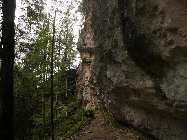 Weg von der Starzlachklamm zur Alpe Topfen
