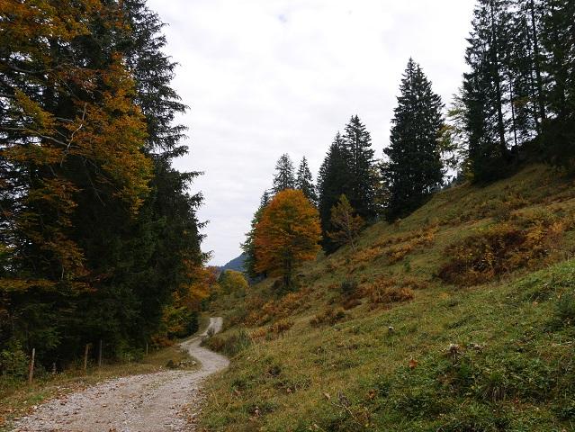 Wanderweg im Gunzesrieder Tal
