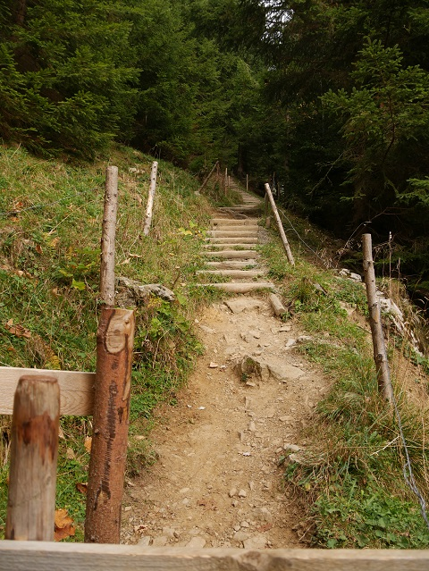 Wanderweg mit Holzstufen zum Grüntenhaus