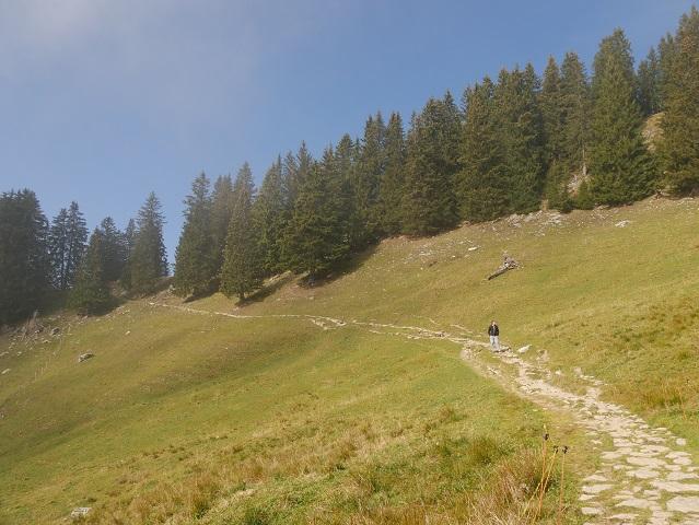 Wanderweg vom Grüntenhaus zum Gipfel