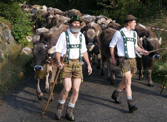 Tierisch - Viehscheid in Bolsterlang #FopaNet