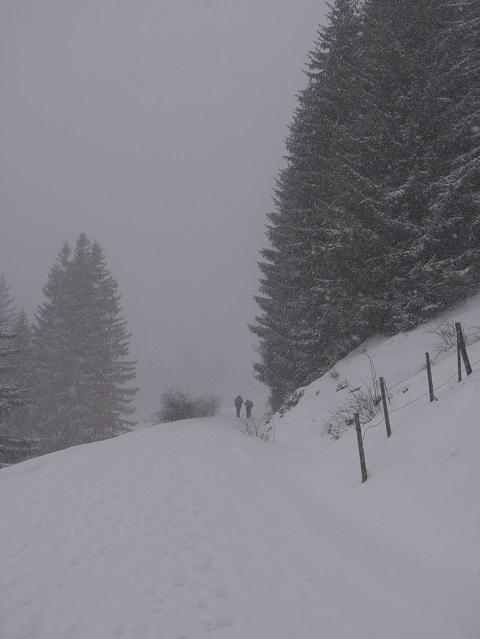 Aufstieg zur Kappeler Alp im Schneetreiben