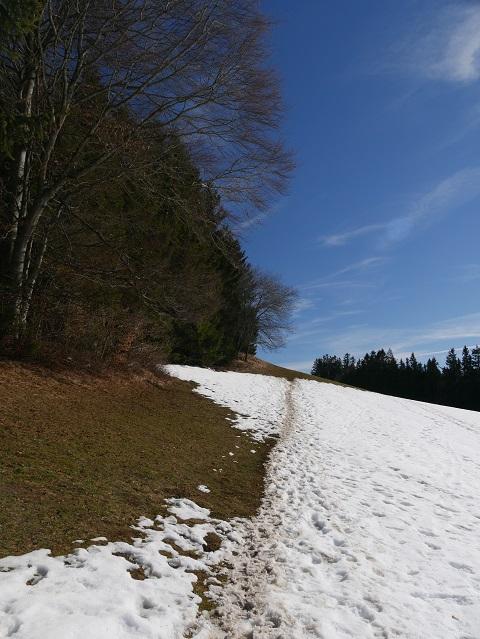Weg zum Buffernandl auf dem Auerberg