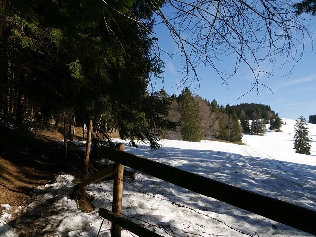 im Winter auf dem Römerweg zum Auerberg unterwegs