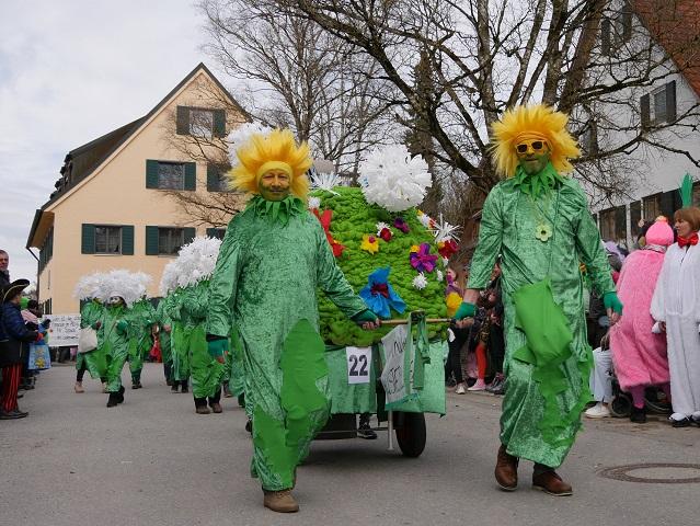 Faschingsumzug Obergünzburg 2019 - Immenthaler Löewnzahngruppe