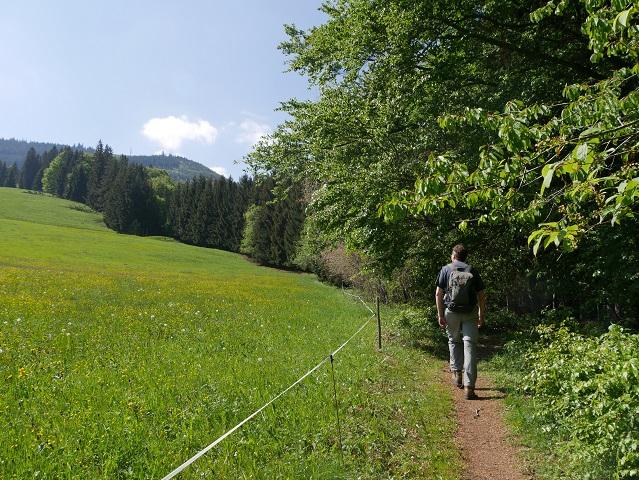 Aufstieg zur Buronhütte