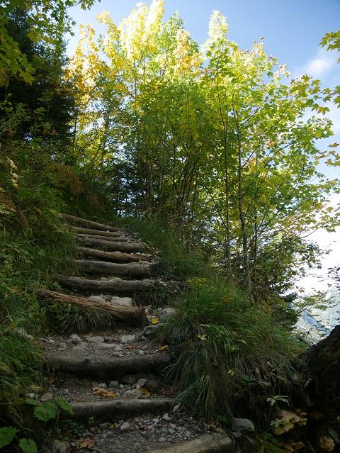 Aufstieg vom Willersbach zur Willersalpe