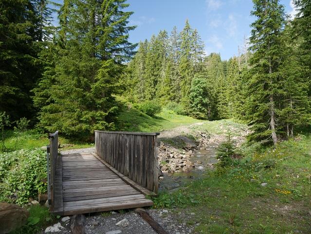 Brücke über die Grappa im Kleinwalsertal