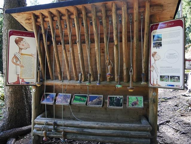 Tierspurenquiz am Erlebnisweg durch die Feuersteinschlucht auf den Auerberg