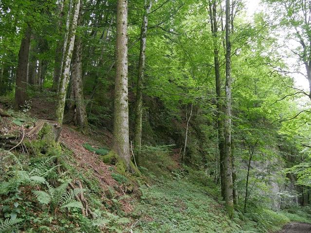 Der Enschenstein bei Weiler