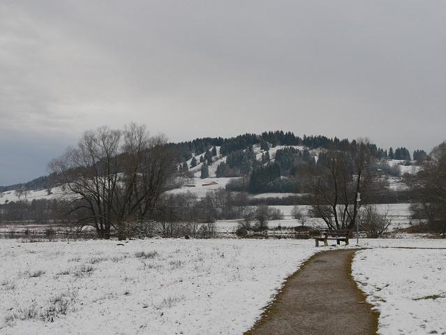 Rundwanderweg Grüntensee - am Ostufer